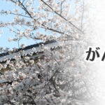 被災地応援サイトへ北海道地震関連情報を追加